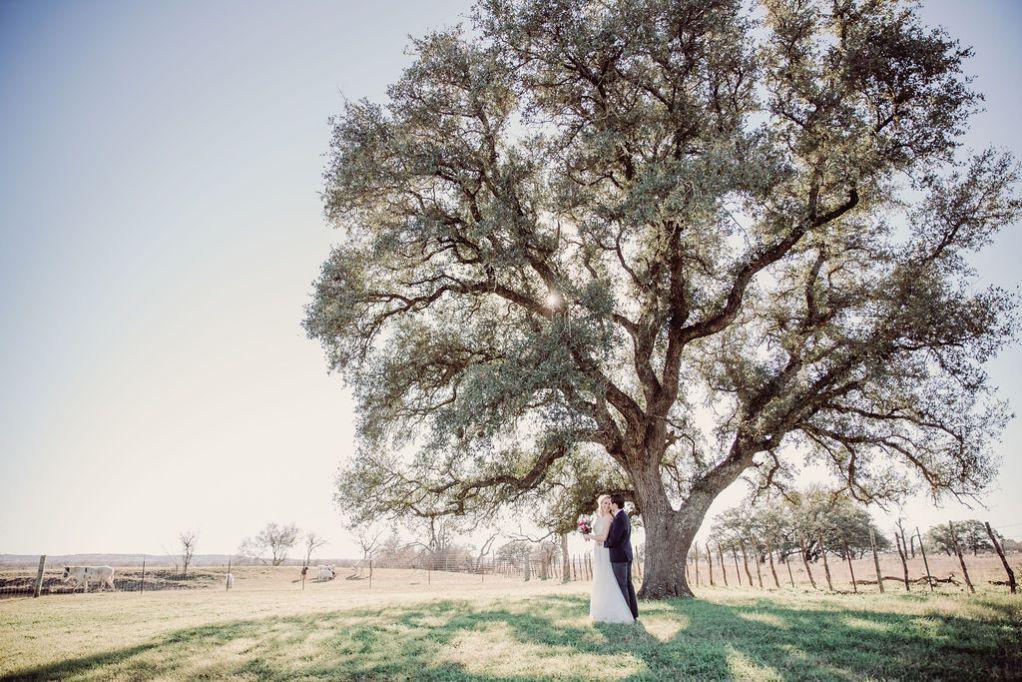 Wedding 17